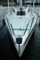 Båtinsekt