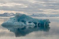 Sommermorgen på Svalbard1