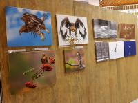 Utstilling I