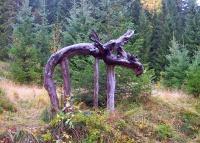 Antatt: Skogens konge