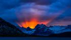 Gull - Lofoten flames