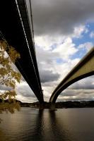 Hederlig omtale: To broer og en høstfarge