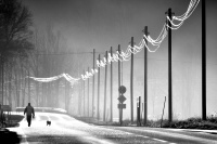 Antatt, Digital monokrom - Glødende linjer
