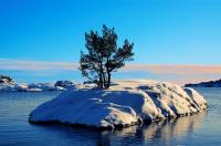 Vinterö