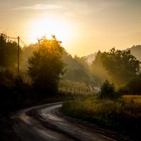 Hederlig omtale - Veien mot lyset