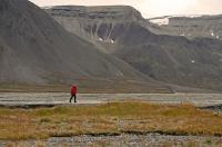 Antatt - Isbjørnvakt på Svalbard
