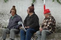 Antatt - Pensjonistene på bytur.