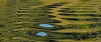 Hederlig omtale - Himmelblått i Grønsfjorden,