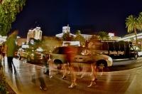 Hederlig omtale: Hot legs in Las Vegas