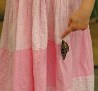 Se-en sommerfugl på min rosa kjole