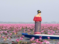Red Lotus lake, Udon Thani, Thailand